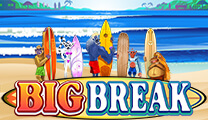 Игровой автомат big break играть бесплатно, без регистрации